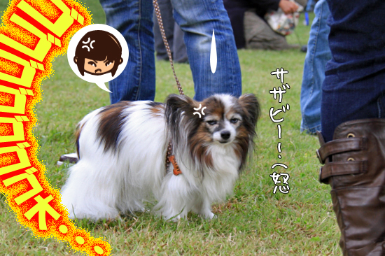 【サザオフ2011】 part6 19