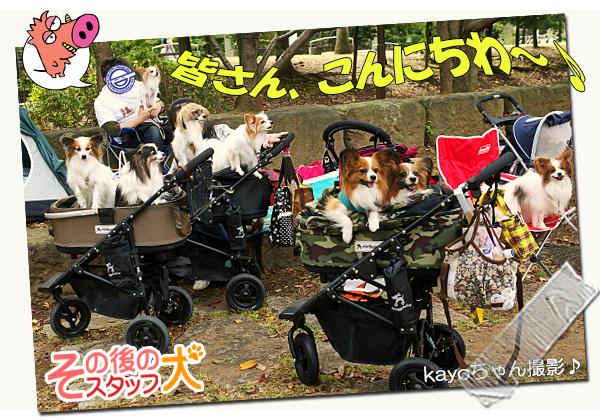 【サザオフ・2014】★その3 自己紹介タ〜イム♪ 11