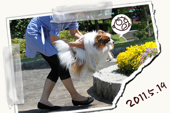 【Wan 2011】(中篇) 08
