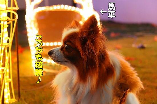 光の馬車★☆★(後篇) 06