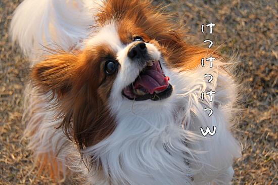 凄まじい笑顔♪ 06