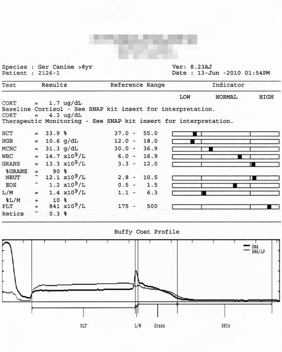 診断結果と手術�