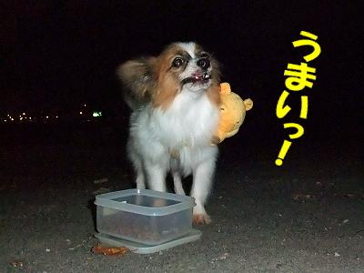 ビガロと食事♪�
