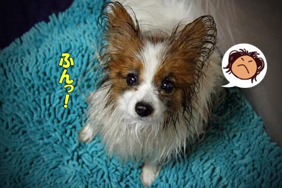 【サザ風呂】 01
