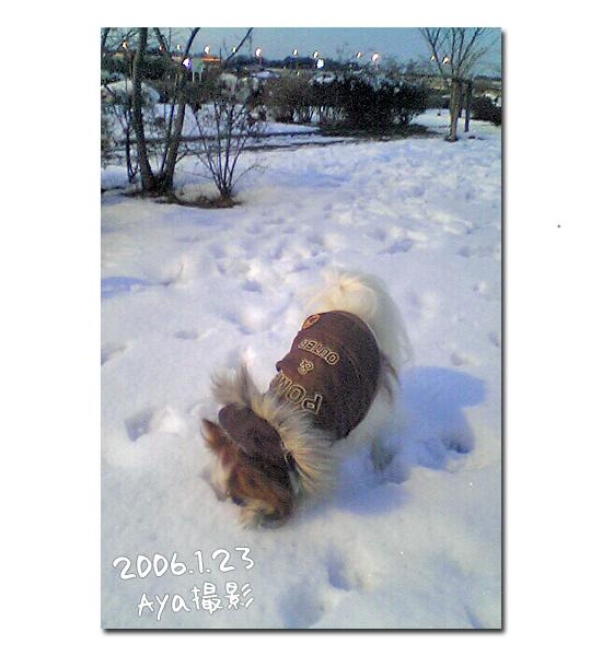 雪の魔法 14