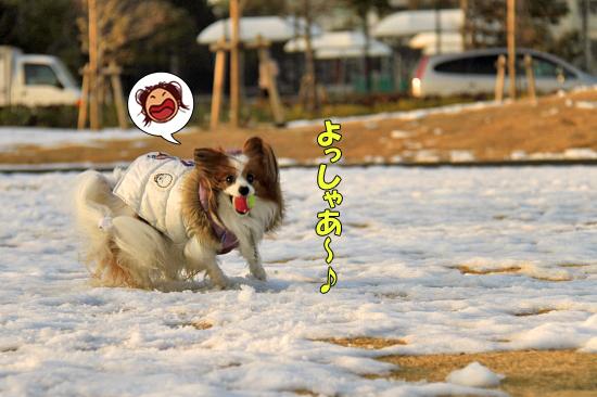 雪の魔法 22