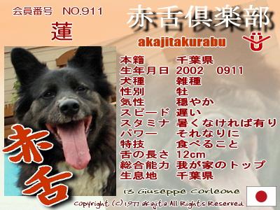 911-ren-2007