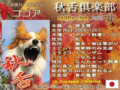 550-cocoa-2008aki