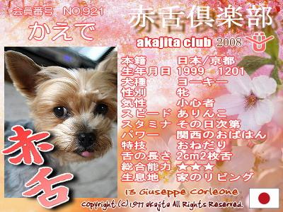 921-kaede-2008sakura