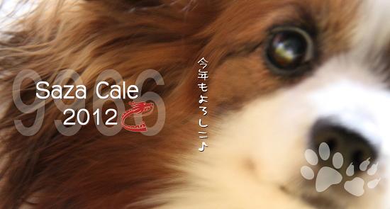 sazacale 15枚★ 03