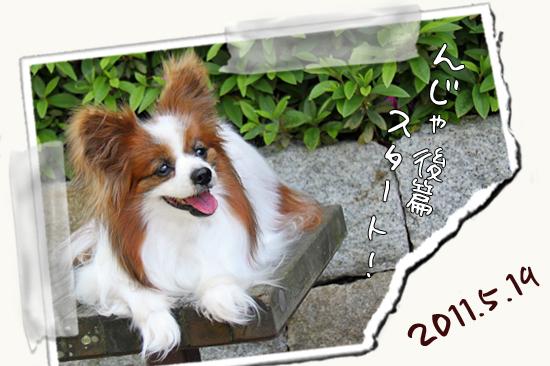 【Wan 2011】(後篇) 06