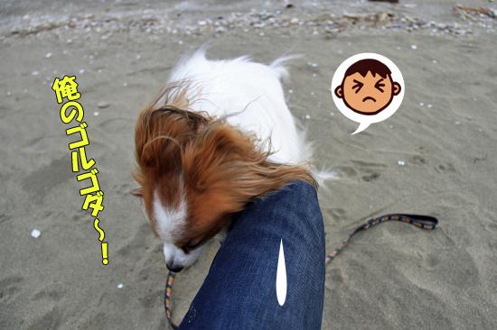 サザビー、砂浜に立つ!! 08