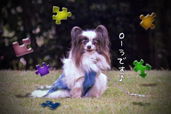 【サザオフ2011】 part6 04