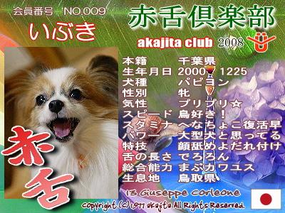 009-ibuki-2008june
