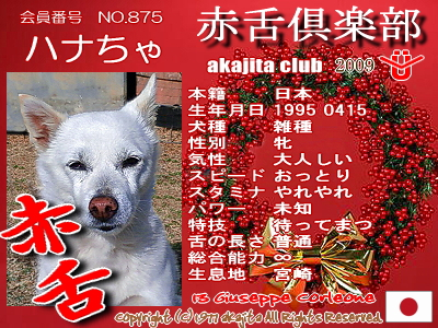 875-hanacha-2009aka