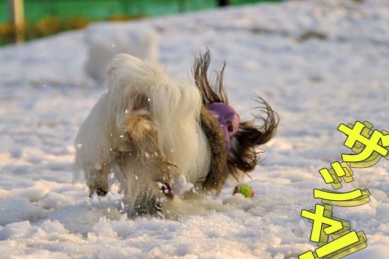 雪の魔法 08