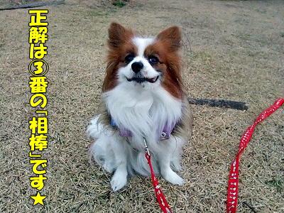レッドカード★当選者発表!�