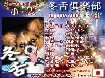 056-komugi-2008fuyu