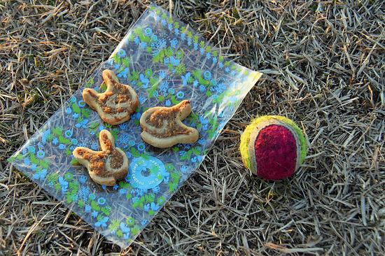 クッキーの正体 08