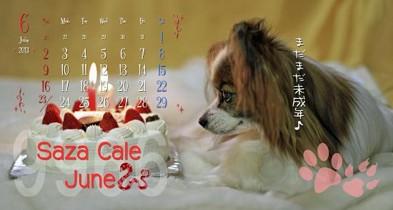 【サザカレ2013】配送〜★☆★ 10