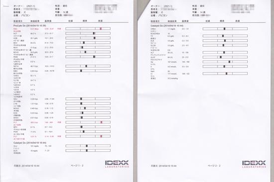 病院にて・・・2014・春 03