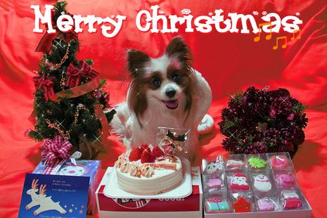 Merry Christmas 2009�