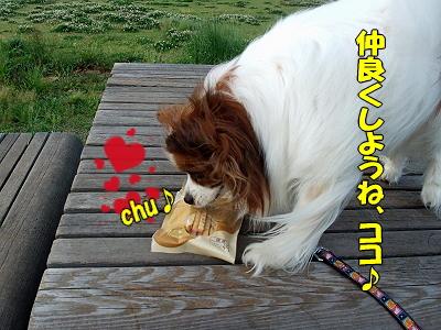 再びじゃがじゃが★�