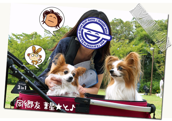 【サザオフ・2014】★その2 巨人VS阪神 03