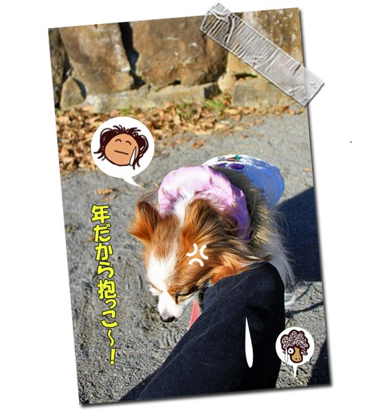 瑞穂の杜・凱旋 07