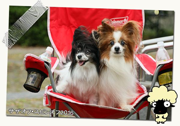 春の園遊会のお知らせ★☆★ 05