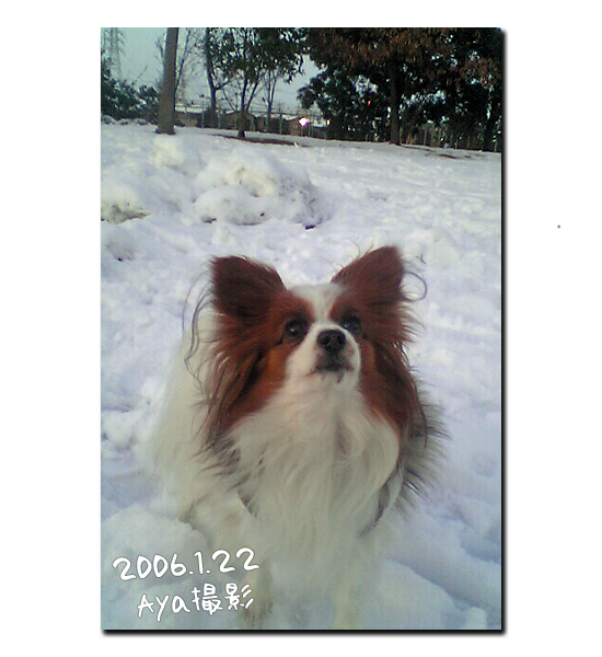 雪の魔法 07