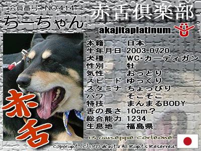 414-chichan