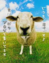 Profile_羊Y
