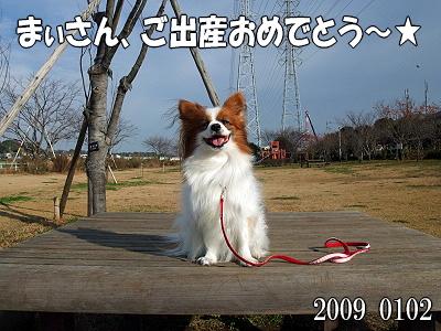 【サザビー検定】�