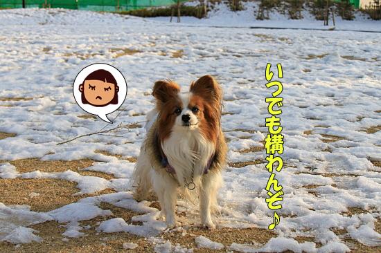 雪の魔法 05