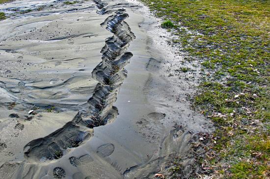 泥に埋もれた日 18