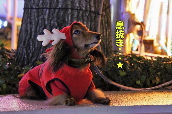 もうすぐクリスマス 04