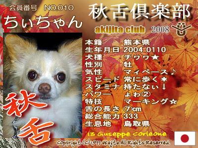 010-chiichan-2008aki