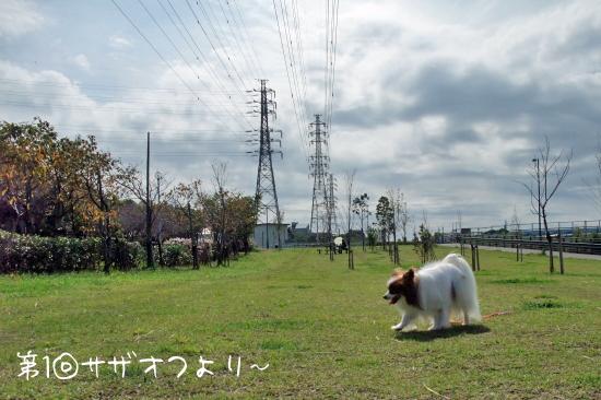 【サザオフ★2017】のお知らせ♪ 04