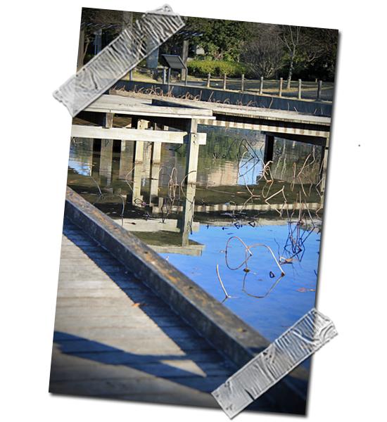 伝説の橋 05