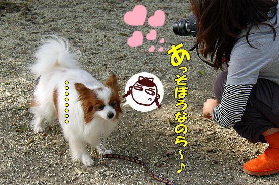 守谷へGO★ 09