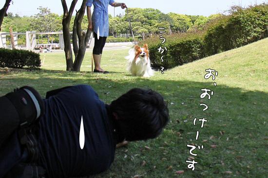【Wan 2011】(中篇) 01