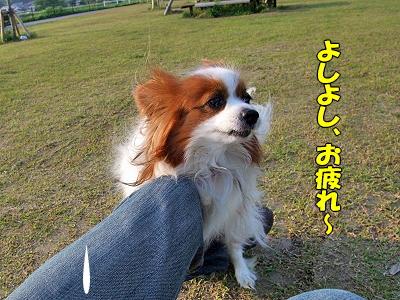 お疲れー(・∀・;)�