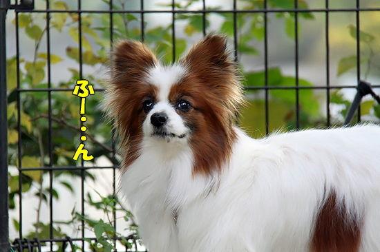 守谷へGO★ 04