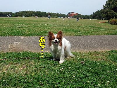 GW幕張オフ(海浜公園編)�