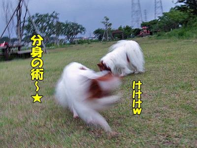 くノ一★参上�