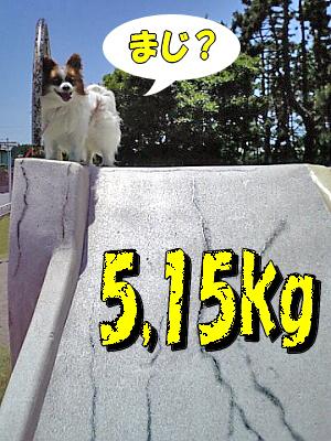 現在の体重・・・・