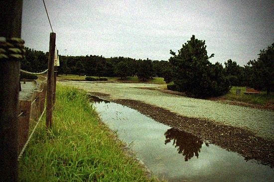 【サザオフ2011】 prologue 06