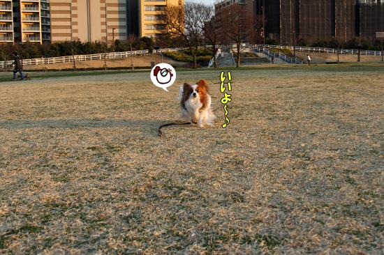 足とボールと公園と・・・ 05