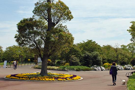 吉田公園♪(前編)�